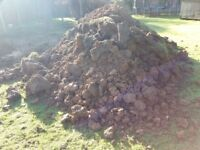 Top Soil for garden/landscaping Free to collect from Wye Ashford TN25