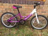 Dawes Venus Girls 20 Inch Wheel 2015 Kids Bike