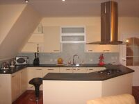 Luxurious Penthouse Apartment - Double room with ensuite