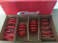 Clio 172/182/cup/trophy Eibach Sportline Springs 1 set new 1 set used