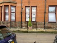 Looking for 3 bed house anniesland or knightswood only.