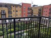 QUALITY ROOM TO RENT IN MODERN DEVELOPMENT OVERLOOKING NICE GARDENS & CANAL CANNOT BE MISSED CALL ME