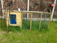 Bunnies house with run