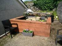 Fish Pond Large 8 X 8 Solid Timber Frame