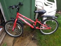 "Girls 20"" ENVY Bycycle from Halfords."