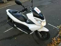 Honda pcx excellent condition only 1499 no offers no offers no offers