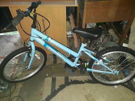 Girls Bike (Blue)
