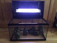 56 litre fish tank with Eheim filter, four ornaments and gravel for base.