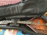 Eastman MD305 REDUCED!