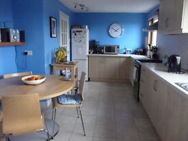 Round Kitchen Table - in good order - Ikea