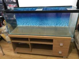 4ft fish tank in good condition 240L with stand (table) fully set up..