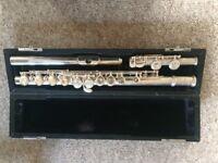 Flute Trevor J.James TT 10x