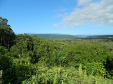 EASY LIVING  DAINTREE RAINFOREST  (free power) Daintree Cairns Surrounds Preview