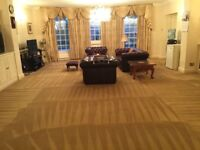 Professional carpet cleaning service /hot water extraction . ***5***Reviews