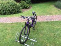 Frog 69 hybrid bike purple