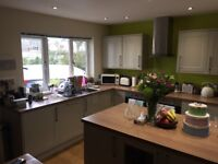 Howdens kitchen fronts, electric hob and sink