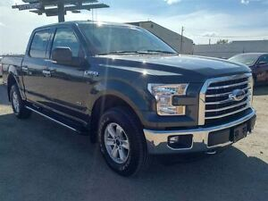 2015 Ford F-150 XTR - Back-up Camera