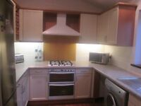 KITCHEN CABINETS WITH SOLID WOOD PAINTED DOORS
