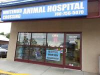 Veterinary Clinic (New Clients Welcome)