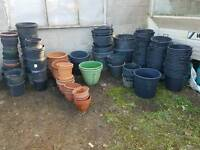 Job Lot of 28 Water Butts & Various Large Pots for Tree Potting etc over 200 pcs
