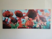 Large poppy canvas print