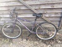 """Womens Apollo Theia hybrid bike 17"""""""