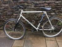 18 gear PEUGEOT bicycle