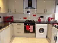 Delighful 1 bed flat in the heart of Brockley available immediately!!