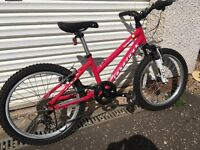 Ridgeback Harmony Girls Mountain Bike