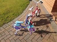 Both bikes for £15