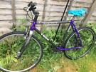 Trek composite project bike