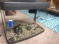 fish tank/ aquarium 40l. heater & filter included