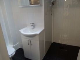One Large double Room with Ensuite Shower Room, fridge and Microwave. Newly refurbished. Hounslow!