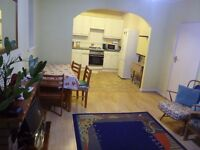 Single Room available in Large 3 bed hse -Turnpike Ln area