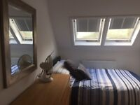 Double room in immaculate detached house