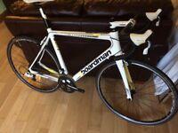 Boardman Team Carbon Ltd edition road bike