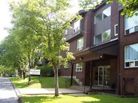 SMALL DOG FRIENDLY, LARGE APARTMENTS, CLAYTON PARK,$500 BONUS