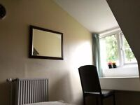 Single Room near York Uni