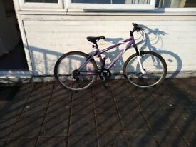 Purple women bike
