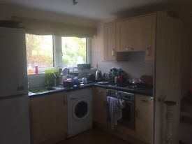 Double room to rent in quiet flat