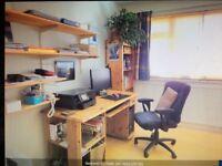 Pine study desk for quick sale