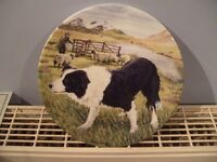 "Bradford Exchange Royal Grafton China 8"" Boarder Collie plate (THE PROTECTOR)"