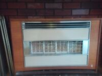 Gas fire for sale (old)