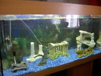 juwel fish tank and stand complete set up