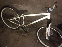 2010 p1 Speshilized jump bike