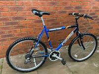 Falcon adult mountain bike