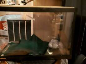 Vivarium with large heat mat attached at rear, reptile carpet and stones with optional extras.