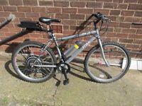 36v Electric bike, golden motor kit,
