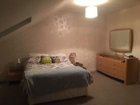 LARGE DOUBLE ROOM WITH ENSUITE AVAILABLE TO RENT