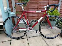 Winter Bike – Stunning Classic Steel Wilier Road Bike - Frame Maroon Red
